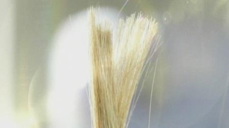 [놀라운 아이디어] 아름다움을 향한 욕망, 염색약