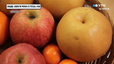 과일을 시원하게 먹어야 더 맛있는 이유