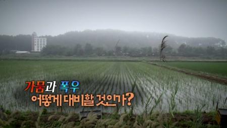 '가뭄과 폭우' 어떻게 대비할 것인가?