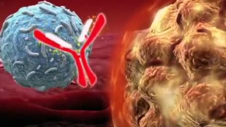 진화하는 항암 치료…암 정복 앞당긴다