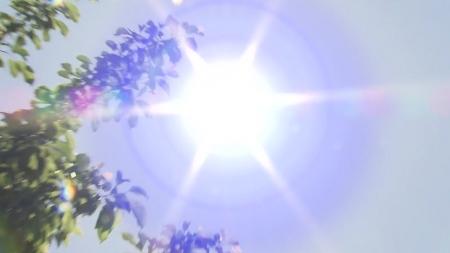 덥다 했더니…올여름 사상 두 번째 폭염