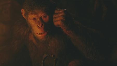 퇴화하는 인간·진화하는 유인원, 가능한가? 영화 '혹성탈출:종의 전쟁'