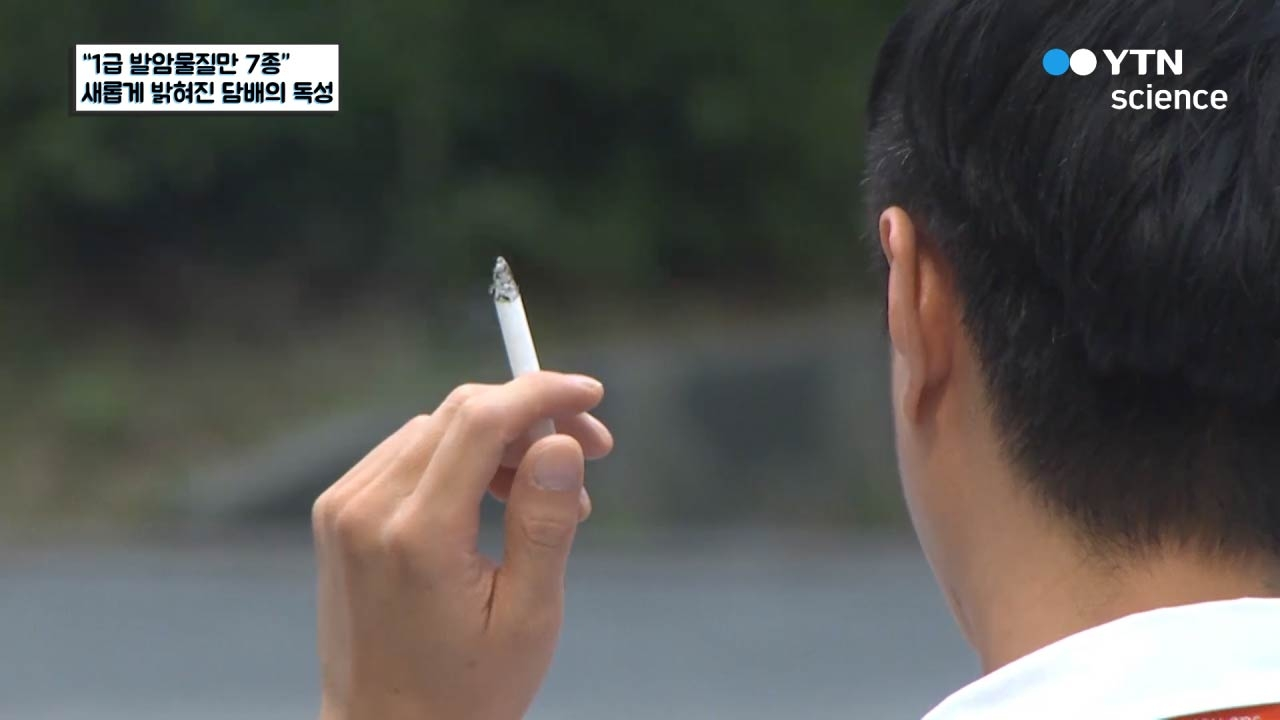 """""""1급 발암물질만 7종"""" 새롭게 밝혀진 담배의 독성"""
