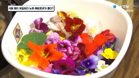 식용 꽃이 과일보다 노화 예방효과가 좋다?