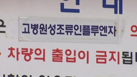 전북 고창 오리 농가 'AI 고병원성'…전국 일시 이동중지
