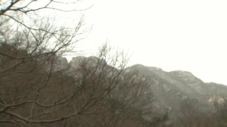 바짝 메마른 대지, 서울도 건조경보...산불 초비상