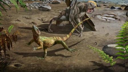 1억년 전 한반도서 두 발로 달린 도마뱀 발자국 발견