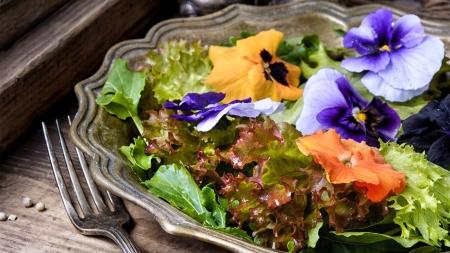 식탁 위에 꽃이 피었어요…건강한 아름다움 '식용 꽃'