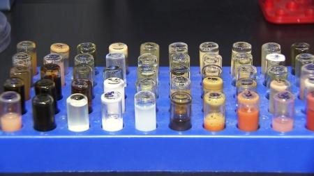 대장균 이용 나노재료 생물학적 합성법 개발