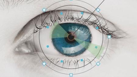인간의 눈처럼 작동하는 '인공 눈'