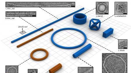종이 접듯 만든 고효율 DNA 나노구조체 개발