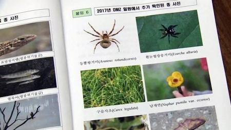 생물의 보고 DMZ…멸종위기 101종 서식