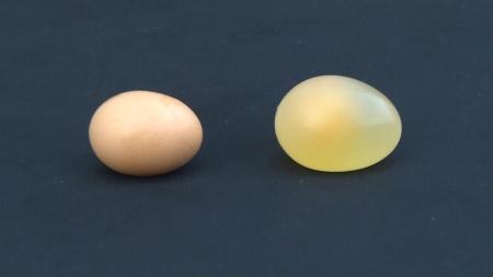 깨지지 않는 달걀! 그게 가능해?