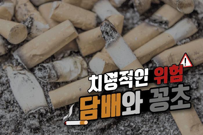 자연에도 치명적인 위험! 담배와 꽁초 이미지