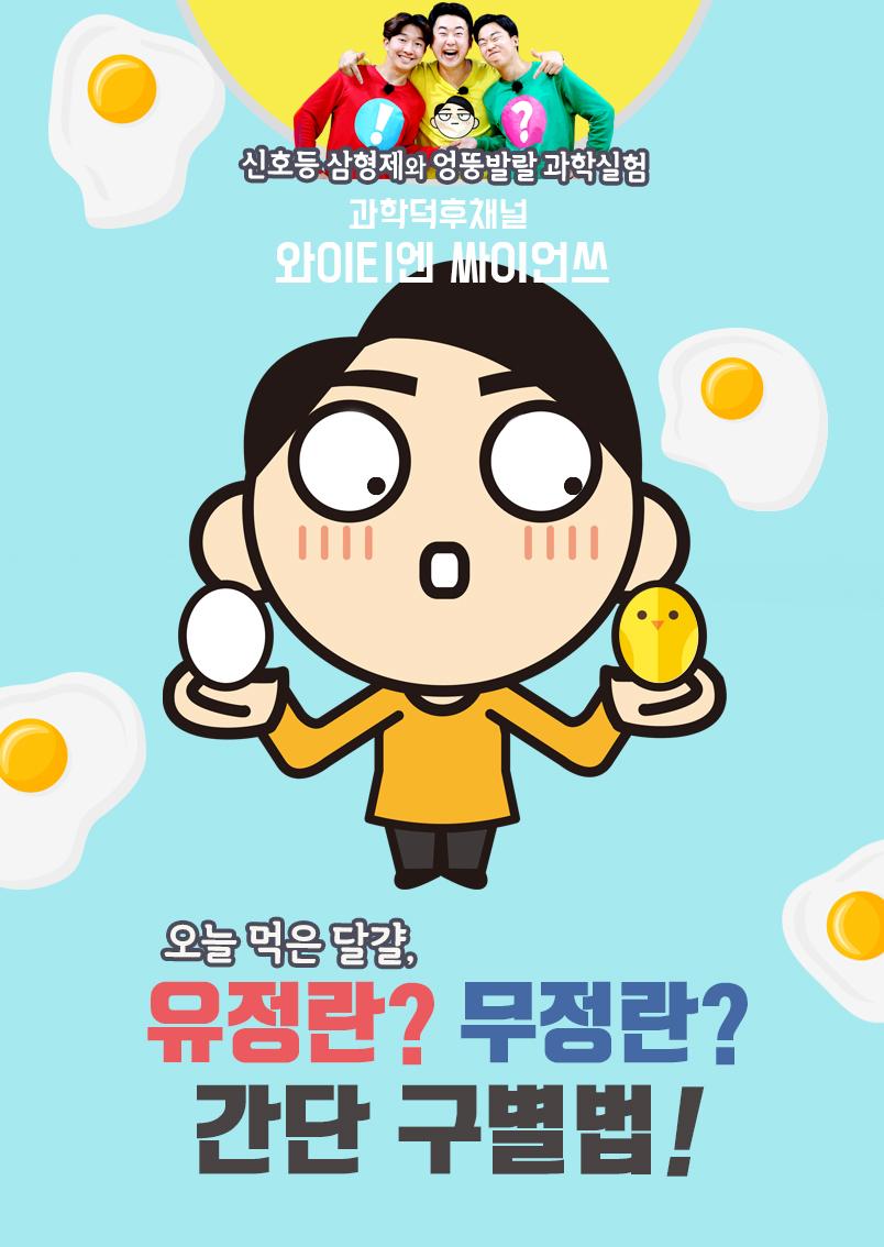 오늘 먹은 달걀, 유정란? 무정란? 간단 구별법! 이미지