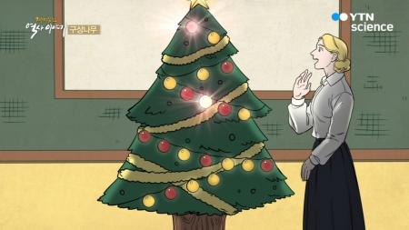 [재미있는 역사이야기] 구상나무