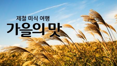 제철 미식여행 '가을의 맛'