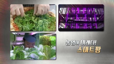 미래형 농업 스마트 팜