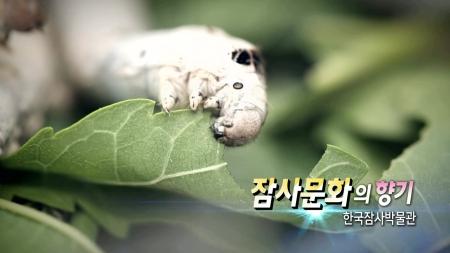 잠사문화의 향기 - 한국잠사박물관