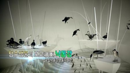 담수생물의 보고(寶庫) 낙동강 – 국립낙동강생물자원관