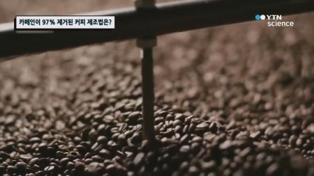카페인이 97% 제거된 커피 제조법은?