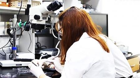 대한민국 과학자 2부 : 한중일 두뇌삼국지