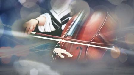 꿈의 오케스트라 : 울림 & 어울림